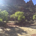 Foto Zion Canyon Campground