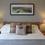 Ty Bryn's Thistle room