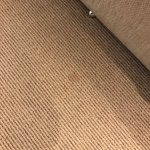 Stain on carpet by bed