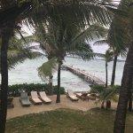 Tropical Attitude Foto