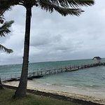 Photo de Tropical Attitude