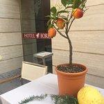 Photo de Hotel Forum Pompei