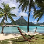 Lots of hammocks and lounge chairs to make your experience more relaxing