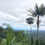 Photo of The El Yunque Rain Forest