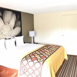 Foto de Super 8 Motel