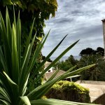 Photo of Petit Hotel Ses Rotges