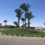 Photo de Mercure Hurghada Hotel
