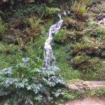 Cursos de agua en el Parque botanico de Gijón