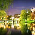 Boston Public Garden Night