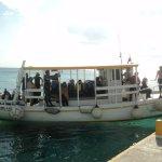 Foto di Pro Dive Mexico