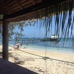 Foto de Isla del faro Amedee