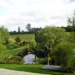Marsden Estate Winery의 사진