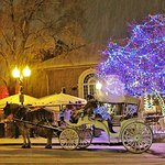 Carriage rides during the Christmas holiday