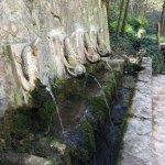 Photo of Monasterio de Piedra