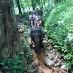 Photo of Khao Lak Land Discovery - Day Tours