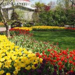 Photo of Cincinnati Zoo & Botanical Garden