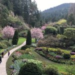 Photo de Butchart Gardens