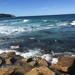 Photo de Bondi to Coogee Beach Coastal Walk
