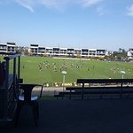 great view of Hawthorn training ground