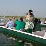 Nal Sarovar Birds Sanctuary