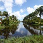 a canal in Rust & Werk plantation