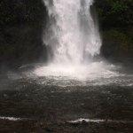 Horsetail Falls- Columbia River Gorge