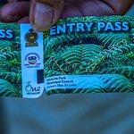 Entry ticket reverse side
