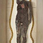Cuerpo con su sistema circulatorio., foto de su pagina web