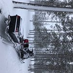 Foto de Lapland Safaris - Rovaniemi