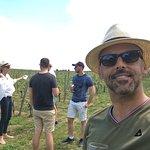 Photo de Bordovino Wine Tasting Day Tours