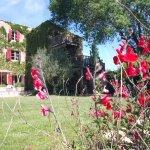Photo de Le Moulin Picaud