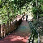 Tasek Lama Park