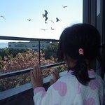 Photo of Hotel Sunosaki Kazenosho