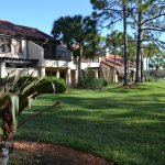 Foto de Villas of Grand Cypress