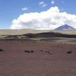 Foto de Reserva Provincial La Payunia