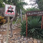 Tremisana Game Lodge Photo