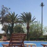 Ansicht Garten ( Welche Palme ist nicht echt ? )