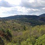 vue côté des Vosges