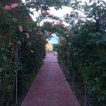 Aktaion Resort Foto