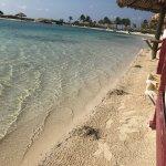 Foto de Parrot Tree Beach Resort