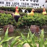Photo of 100 Egg Theme Park