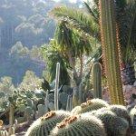 Photo of Jardi Botanic de Cap Roig