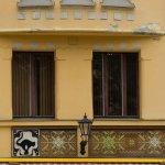 Cat House Foto