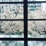 Foto de Hotel Gajoen Tokyo