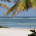 صورة فوتوغرافية لـ Mayan Beach Garden