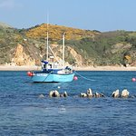 Lulworth cove and durdle