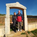On Cote D'Or Wine Tour, Beaune, France