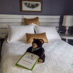 Whale Room - queen bed, shared bath, view of Bras d'Or Lake