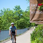Valley River Inn on the banks of the Willamette River - Bike, Walk or Jog the River Path in Euge