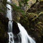 Foto de Plodda Falls